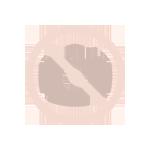 Default Title Icon